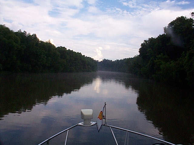 Alabama River Cut-Off