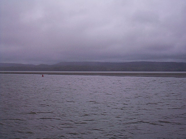 Guntersville Lake: Gray and grassy